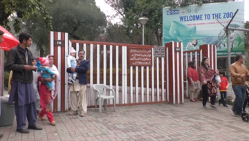 Visitors disappointed by decline of Islamabad zoo.